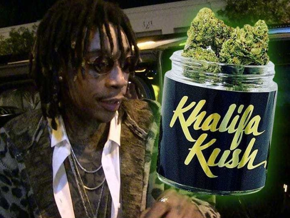 0420-wiz-khalifa-tmz-river-rock-cannabis-3.jpg